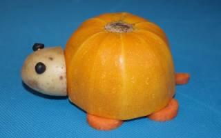 Ежик из кабачка поделка своими руками. Шесть зверей из овощей. и других фруктов и овощей