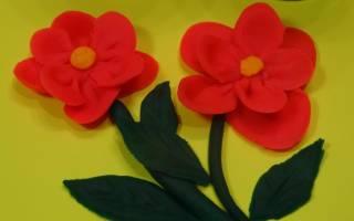 Как лепить цветок из пластилина. Цветы из пластилина. Как сделать из пластилина цветы