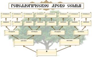 Генетическое дерево семьи своими руками с признаками. Как сделать генеалогическое дерево своими руками