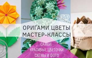 Цветы из бумаги. Делаем оригами Цветок» своими руками»