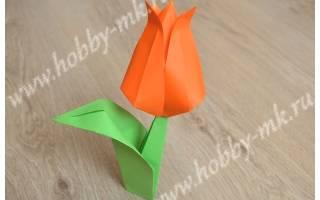 Как сделать из бумаги цветок тюльпан. Как сделать тюльпан из бумаги своими руками, оригами