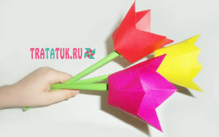 Красивые цветы шаблоны для вырезания. Как сделать тюльпан из бумаги? Учимся легко и быстро делать тюльпаны своими руками. Легкий и быстрый способ изготовления тюльпана из цветной бумаги