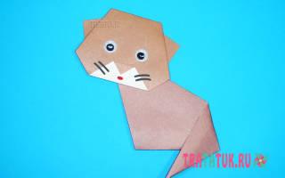 Оригами из бумаги схема кота. Как сделать из бумаги кошку