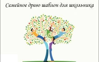 Семейное древо шаблон для фотошопа своими руками. Как составить генеалогическое древо семьи. Что такое генеалогическое дерево