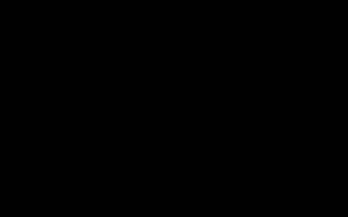 Как сделать собаку из модулей схема сборки. Модульное оригами: животные – схемы сборки