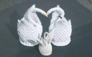 Лебедь из бумаги своими руками схема. Делаем лебедя из бумаги в технике оригами. Как сделать модульное оригами лебедь: готовим модуль