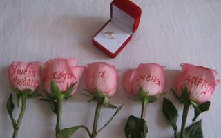 Как правильно сделать предложение девушке выйти замуж. Как сделать предложение девушке оригинально в домашних условиях