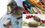 Кошка своими руками из подручных материалов. Игрушка для котят: поиграем в прятки? Интерактивные игрушки для развития интеллекта
