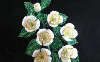Цветы из бисера своими руками жасмин. Жасмин из бисера: мастер-класс и схема плетения. Плетение цветов из бисера