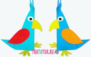 Схема как сделать попугая. Как сделать попугая из бумаги: мастер-классы со схемами. Другие бумажные пернатые