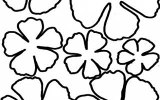 Как сделать объемные цветочки. Как сделать цветок из бумаги своими руками легко и быстро: разные размеры