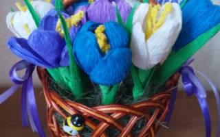 Цветы из бумаги своими руками быстро. Подснежники, тюльпаны, крокусы. Анемоны из гофрированной бумаги