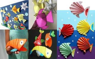 Как сделать рыбу из бумаги. Как сделать из бумаги рыбку легко и быстро