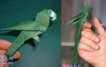 Как сделать попугая из бумаги поэтапно. Оригами попугай. Мастер-класс. Необходимые материалы и инструменты