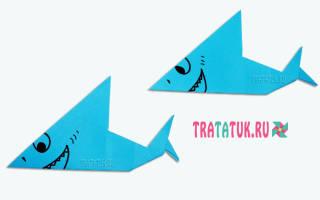 Как сделать из бумаги акулу схема. Как из бумаги сделать акулу — подробное описание