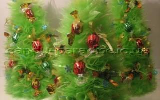 Как сделать новогоднюю композицию из конфет. Подарки и композиции из конфет: коллекция мастер-классов