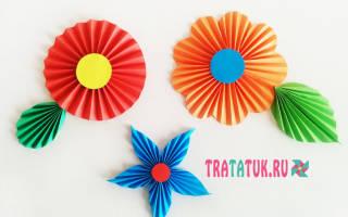 Бумажные цветы своими руками схемы шаблоны. Одуванчик, астра, ромашка, гвоздика — самый легкий способ, как сделать цветок из бумаги. Для работы потребуется