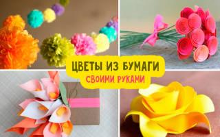 Как сделать объемные цветы из бумаги а4. Мастер класс — сборка цветка по шаблонам. Слойка из гофрированной бумаги