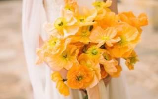 Как сделать красивый и оригинальный цветочный букет своими руками? Свадебный букет из шишек и конфет. Как правильно составить букет из живых цветов