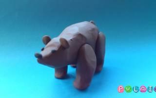 Последовательность лепки медведя из пластилина. Как сделать медведя из пластилина