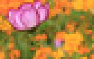 Схема плетения снежинки из бусинок. #1 Новогодний кулон снежинка: делаем украшения своими руками, МК. #6 Сережки рождественский олень из бисера своими руками: мк с фото