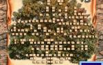 Скачать виньетка генеалогическое древо для фотошопа. Как сделать генеалогическое дерево