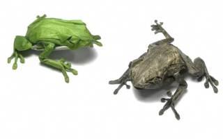 Сложить лягушку из бумаги просто. Как сделать лягушку из бумаги, которая прыгает: схема с фото и видео