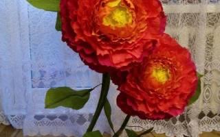 Мастер-класс по изготовлению ростовых цветов из гофрированной бумаги. Интерьерные цветы своими руками — очень много фото и видео